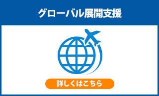 グローバル展開支援