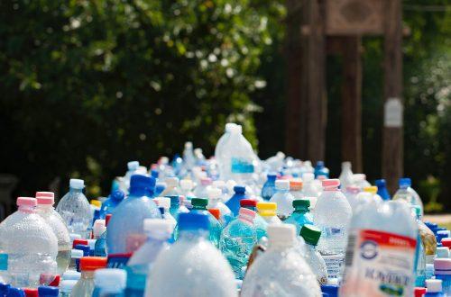 海外進出・海外展開:米国カリフォルニア州で2022年1月以降、すべての家庭と企業に有機性廃棄物のリサイクルが義務付けへ(州法SB 1383)