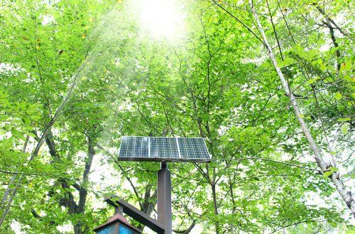 海外進出・海外展開:カリフォルニア州で新しいクリーンエネルギー法案が成立 エネルギー関連事業のビジネスチャンス